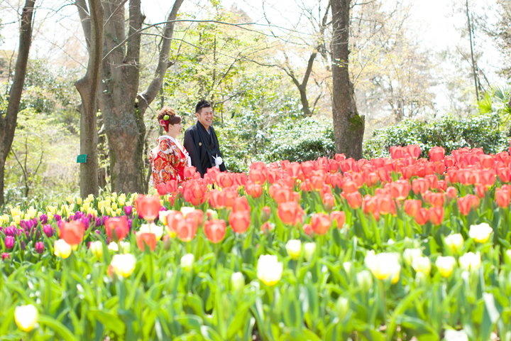 春 桜 前撮り