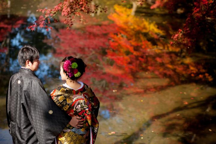 植物園 紅葉