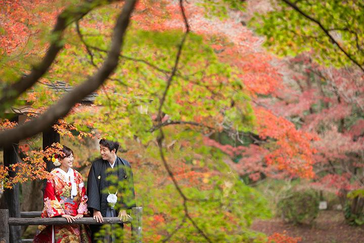 植物園 紅葉 前撮り