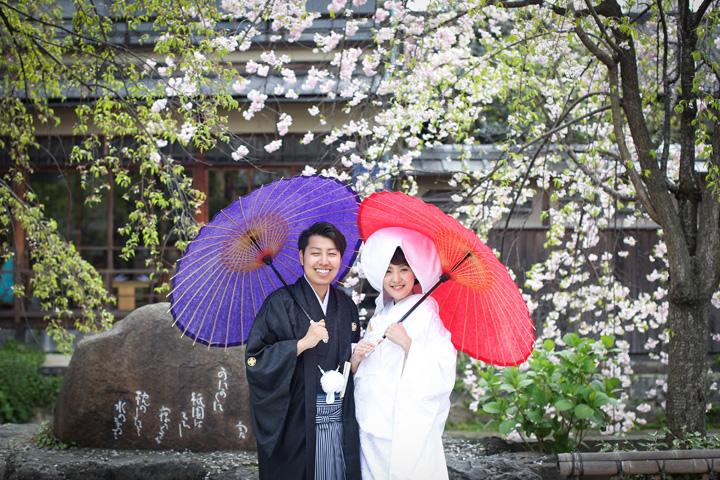 祇園 桜 前撮り