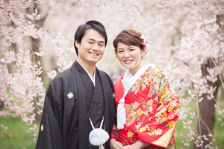 桜は京都好日