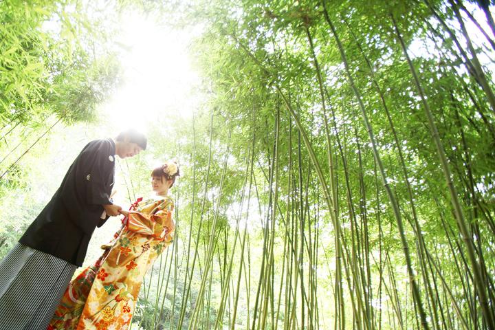 夏 前撮り 京都 和装