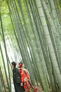 竹林 前撮り 春