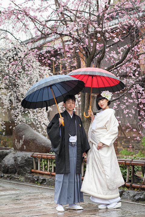 桜 前撮り 祇園