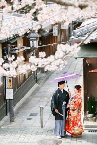 京都 桜 前撮り