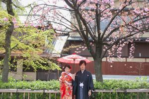 八重桜 和装 前撮り