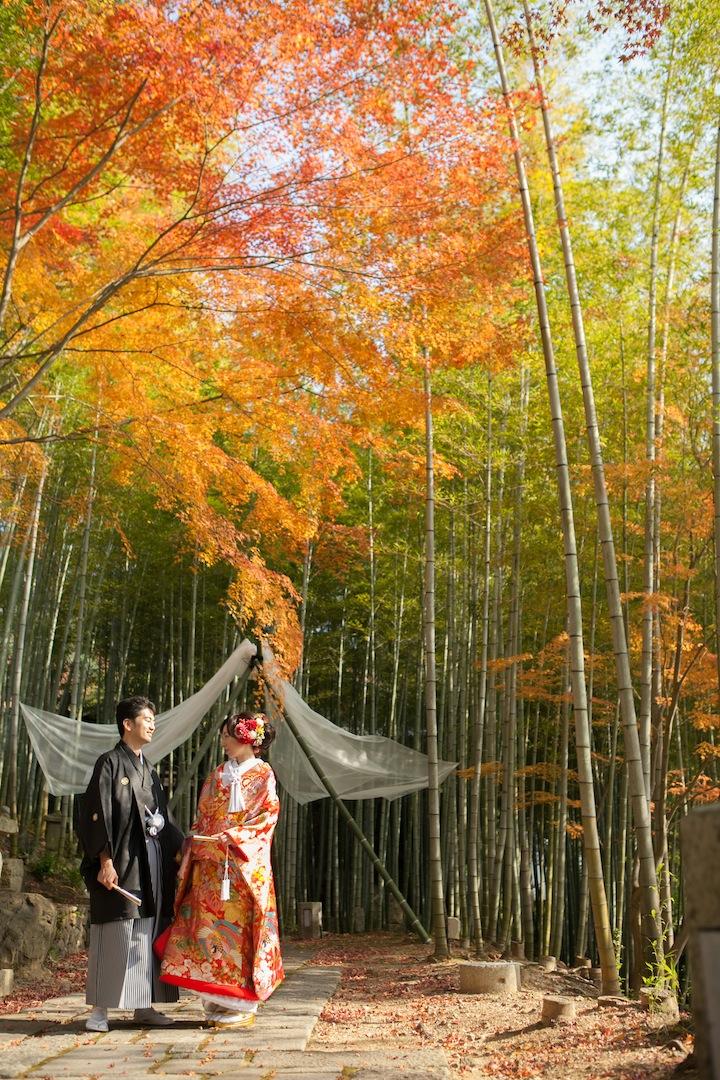 前撮り 秋 紅葉