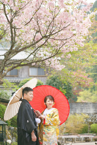 桜 正寿院