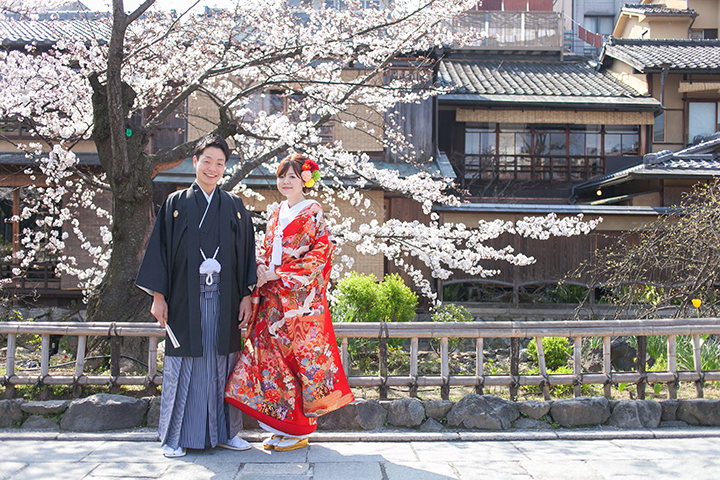 桜 今宮神社 前撮り