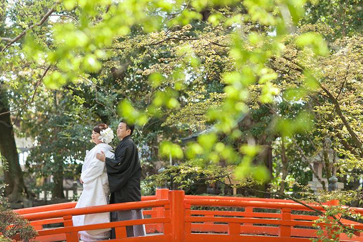 春 今宮神社 新緑